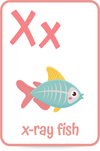 Words that start with the letter X like x-ray fish