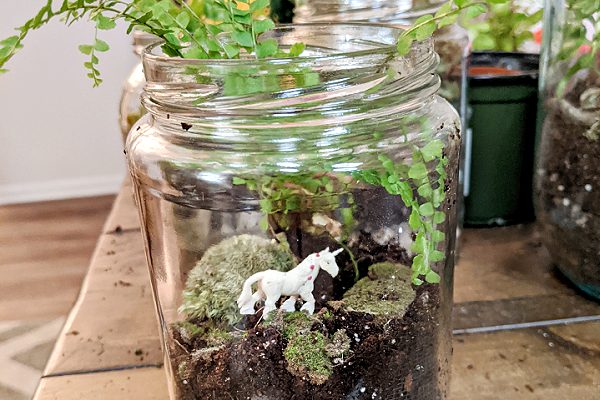 A small jar is filled with dirt, moss, and a happy plant. It is decorated with a small unicorn.