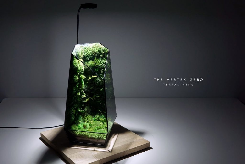 This large glass terrarium is full of moss, even on the walls! The Vertex Zero from TerraLiving is absolutely gorgeous.
