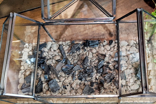 Chunks of lump charcoal sit on top of window screen, which will separate the soil from the pea gravel drainage layer.