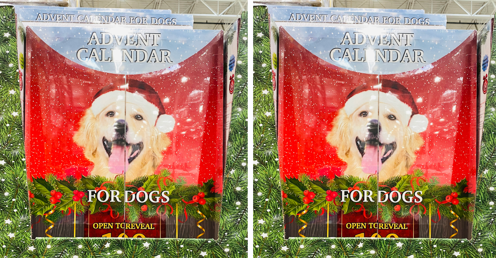 Costco Is Selling A Dog Advent Calendar Filled With 100 Meaty Treats How to keep a mummy. costco is selling a dog advent calendar