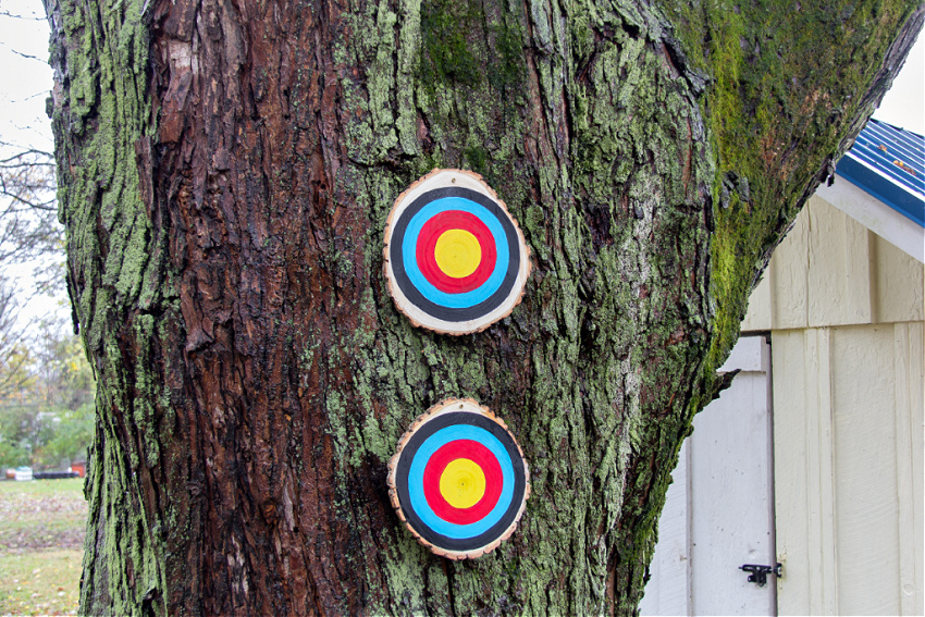 small targets hanging on a tree in a backyard