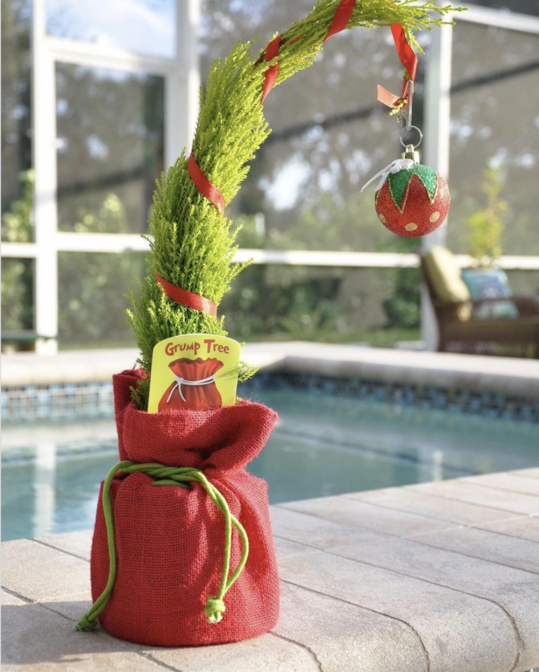 You Can Buy a Grinch-Inspired Tree at Trader Joe's That Will Make Your Heart Grow Three Sizes