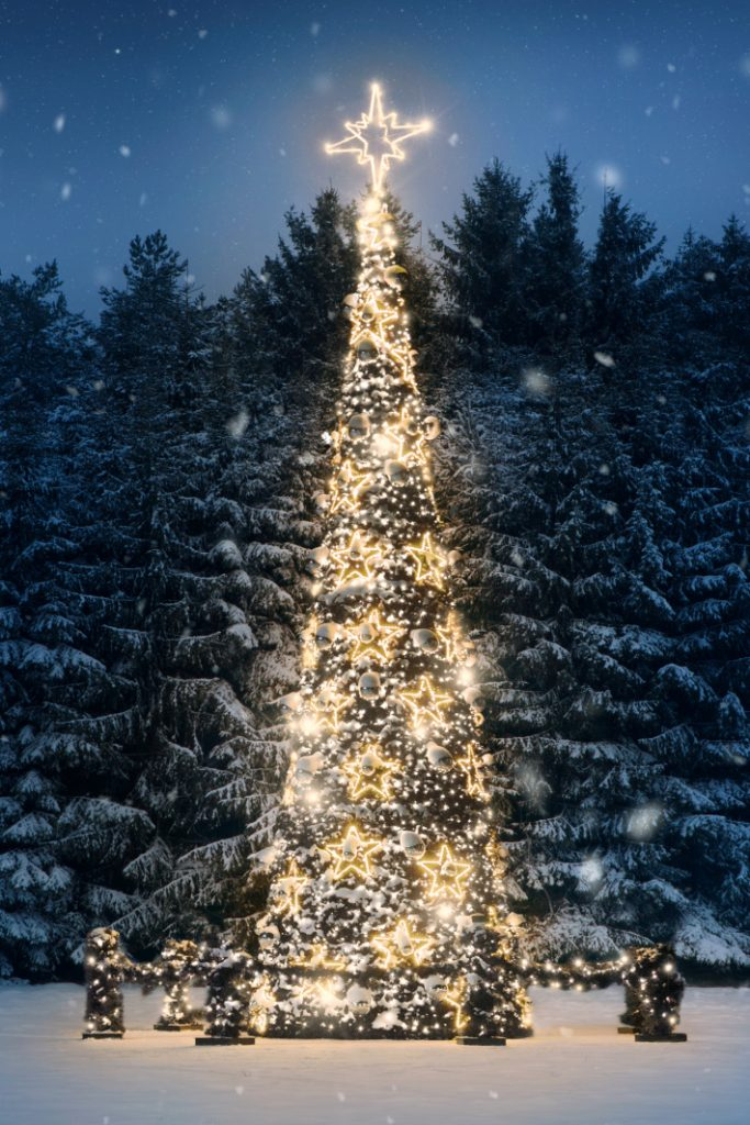 Go on a Christmas game scavenger hunt for lights with your family this year - pictured is a beautifully lit Christmas tree with stars
