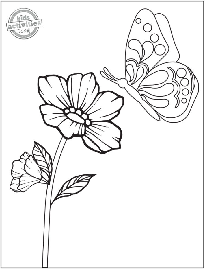 free printable flower coloring pages - flower and butterfly coloring page - butterfly flying over open flower