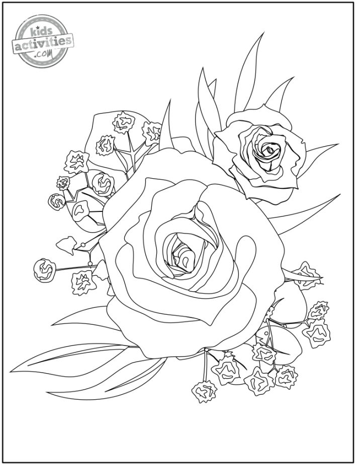 free printable adult coloring page - rose coloring page with roses and baby's breath flowers in a intricate bouquet