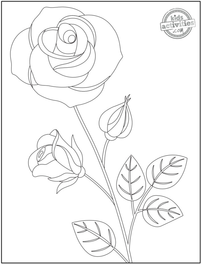 printable rose coloring page - part of flower coloring pages set - large open rose on a long stem with a bud and leaves