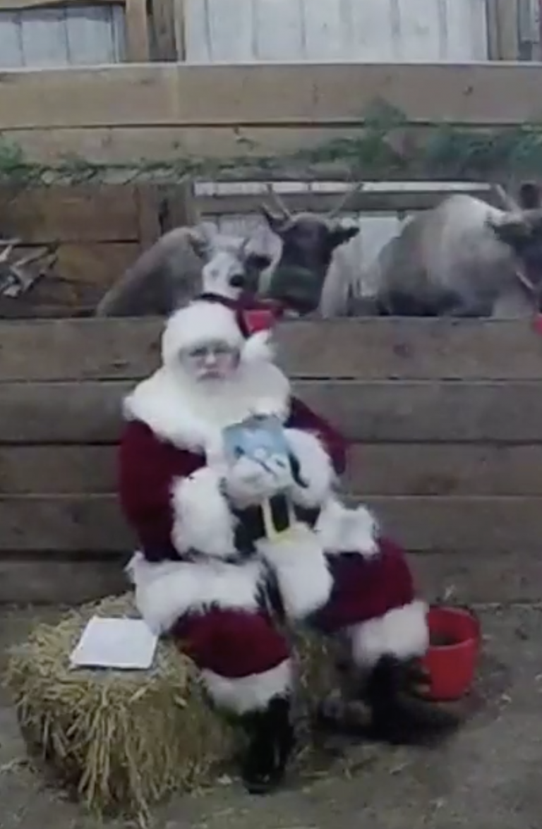 Your Kids Can Watch Santa and His Reindeer Live at The North Pole. Here's How.