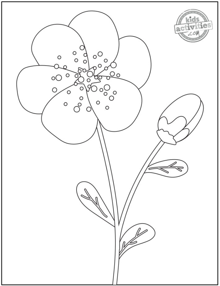 free printable flower coloring pages - cute flower coloring page - simple shapes with stars and bubbles and a bud
