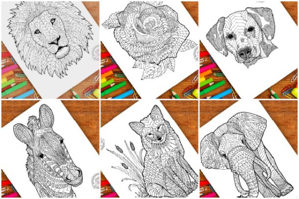 zentangle designs from Kids Activities Blog - shown are zentangle lion, rose, dog, zebra, fox and elephant with colored pencils and markers