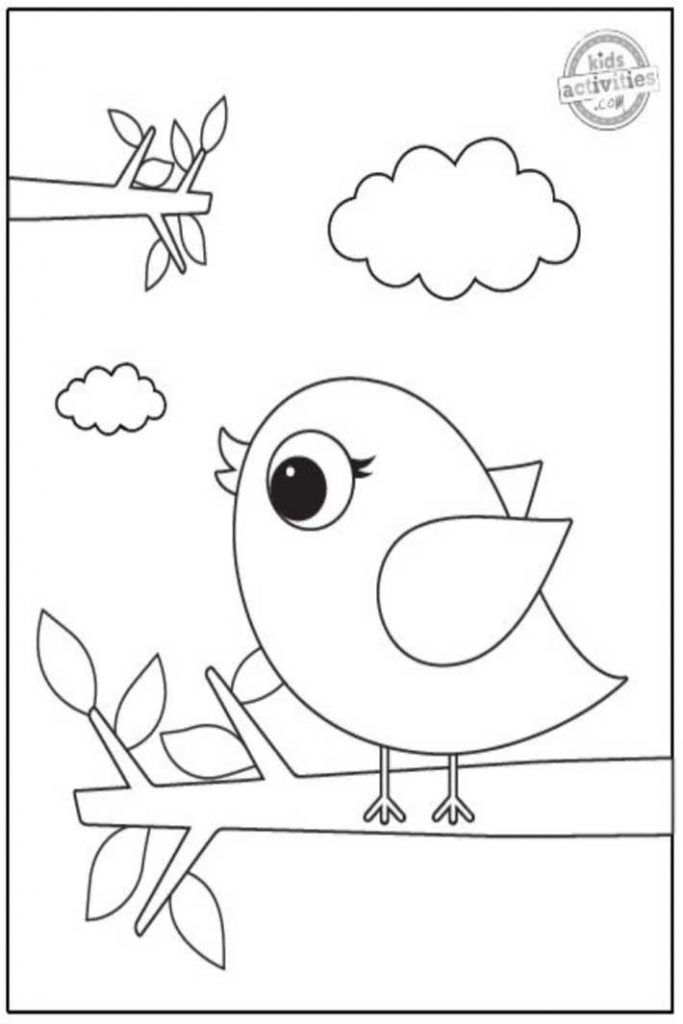 free bird coloring page