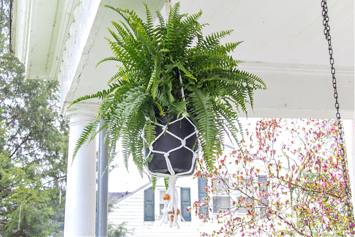 A potted fern being hung on a porch by a macrame plant holder.