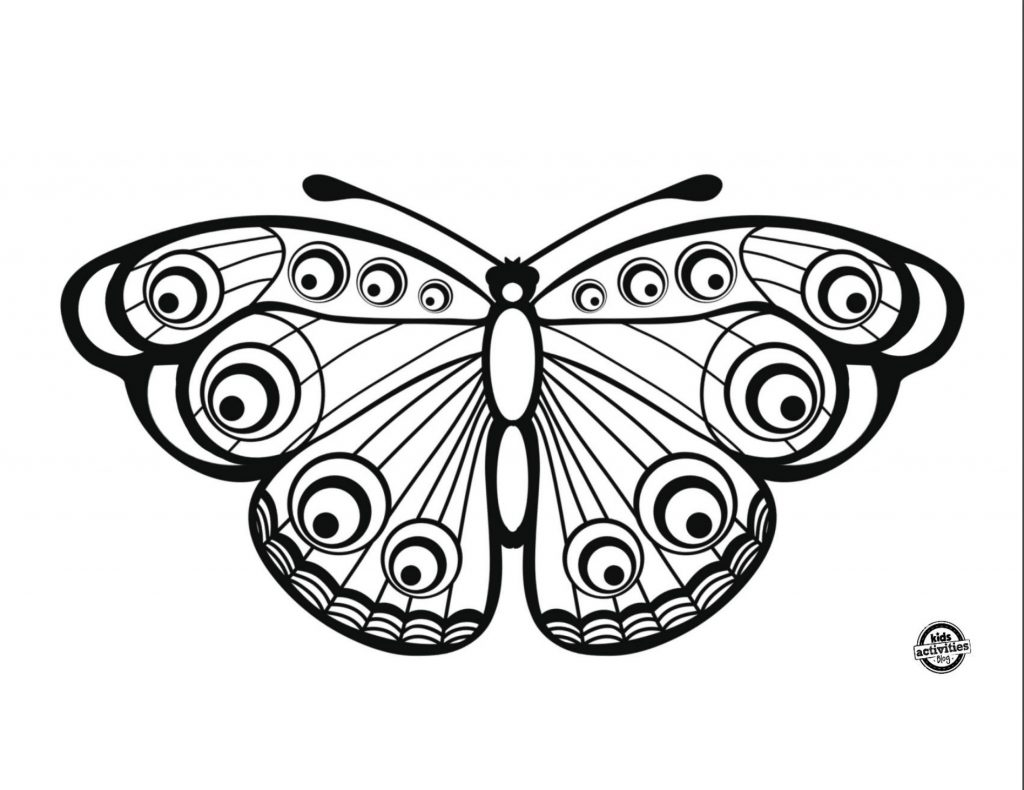 Single beautiful butterfly coloring page pdf with large open spaces for color
