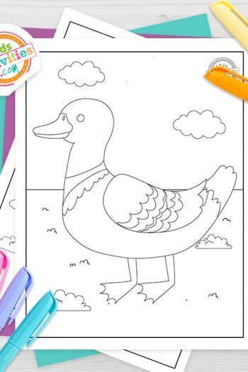 Duck Coloring Pages Feature Image