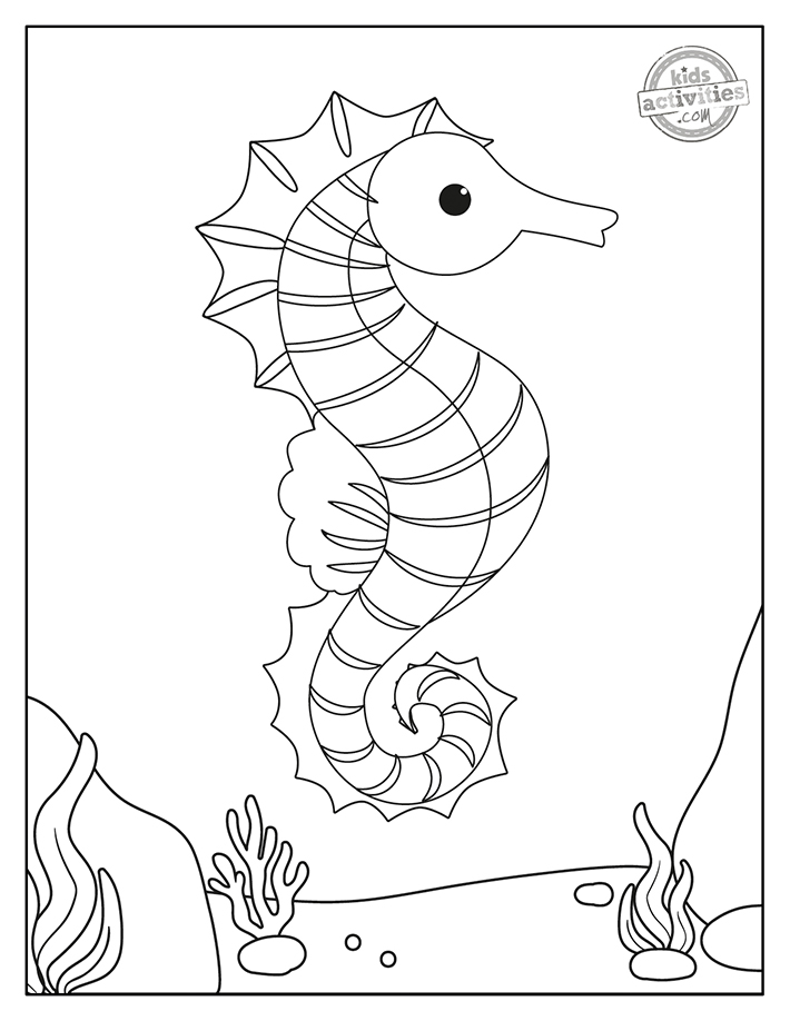 free seahorse coloring pages