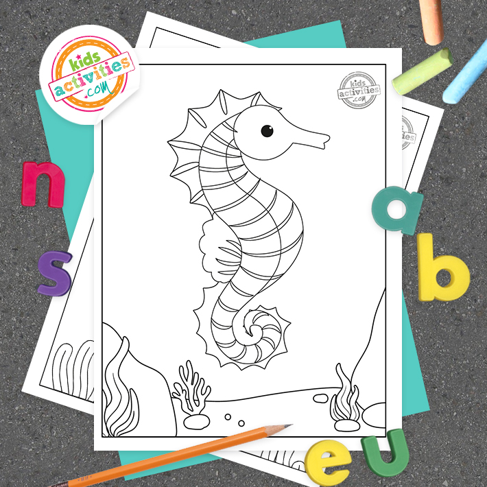 Seahorse Coloring Pages Square