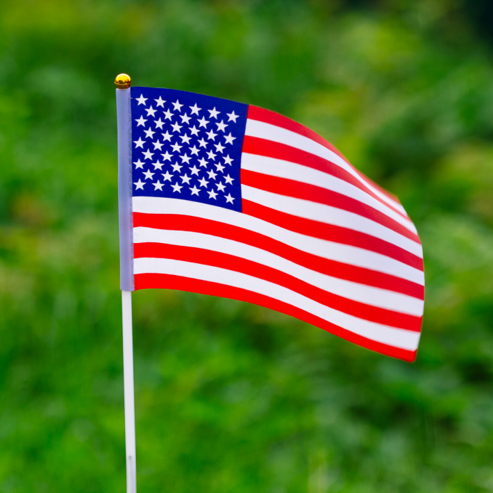 Go on an American Flag hunt for the 4th of July - Kids Activities Blog - flag in grass shown
