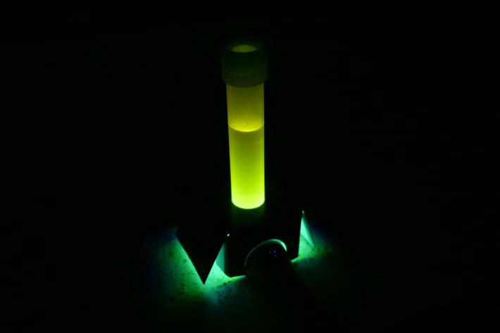 Finished homemade glow stick experiment with glowing yellow - Kids Activities Blog