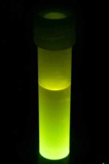 Make-your-own-glow-stick-at-home-Kids-Activities-Blog