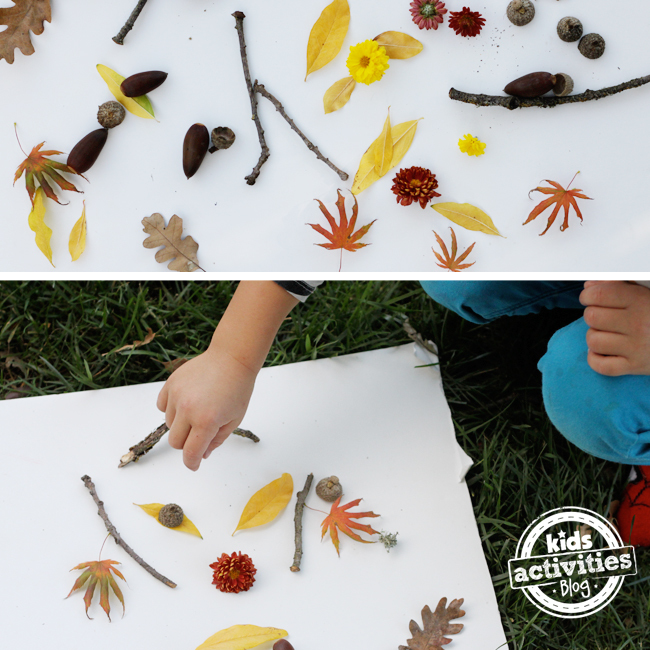 drawing with nature - outside fall art for kids using found nature objects like sticks leaves flowers acorns and more