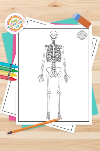 Skeleton Coloring Pages Feature Image
