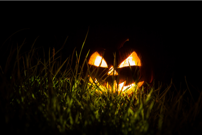 We are right here - technique to decrease halloween scare - KAB - scary jack o lantern in grass in the dark